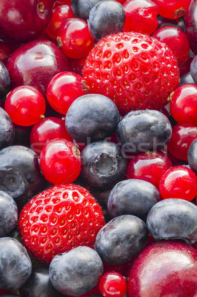 Baies tous accent fruits macro Photo stock © AlessandroZocc