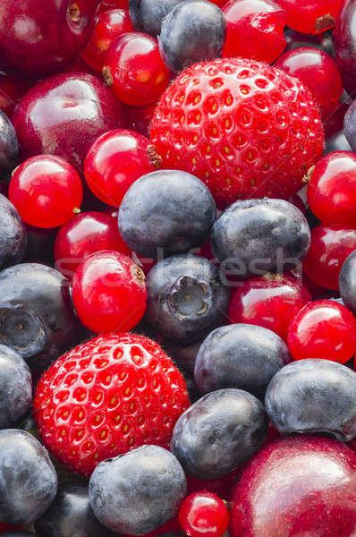 Bessen alle focus vruchten macro Stockfoto © AlessandroZocc