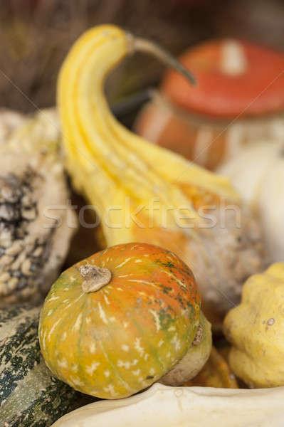 Wybór kolorowy Widok rynku tle Zdjęcia stock © AlessandroZocc