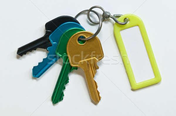 Grupo claves muchos colores identificación casa Foto stock © AlessandroZocc