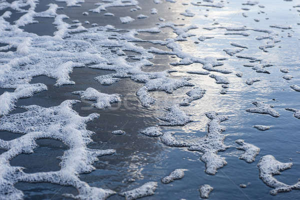 Polluted sea water on beach Stock photo © AlessandroZocc
