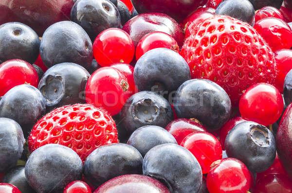 Assorted berries Stock photo © AlessandroZocc