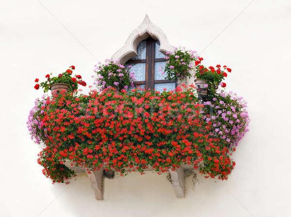 итальянский дома балкона розовый красные цветы Сток-фото © AlessandroZocc