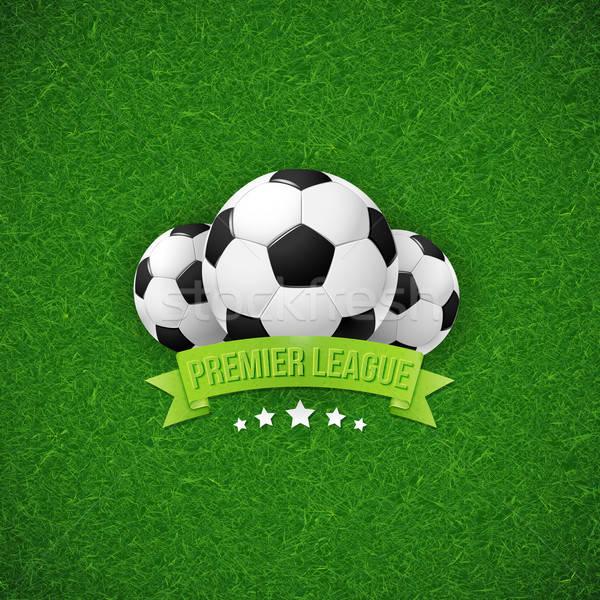 Soccer football poster. Football field background. Stock photo © alevtina