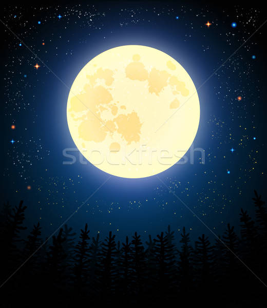 Full moon shines on a pine forest. Stock photo © alevtina