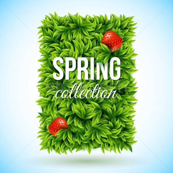 Fényes levél címke ízletes eprek tavasz Stock fotó © alevtina