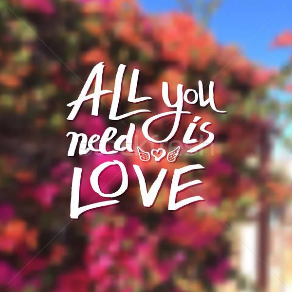 Todo necesidad amor cariñoso mensaje etéreo Foto stock © alevtina