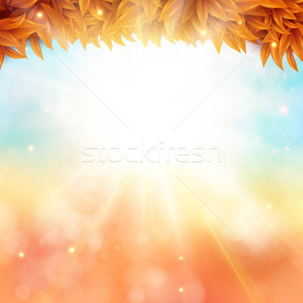Abstract autumn poster with shining sun and blurred background.  Stock photo © alevtina