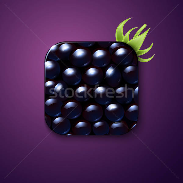 Blackberry texture icon stylized like mobile app. Vector illustr Stock photo © alevtina