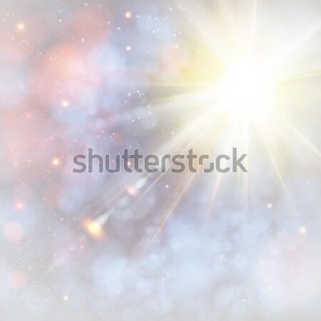 Zimą słońce miękkie bokeh Zdjęcia stock © alevtina