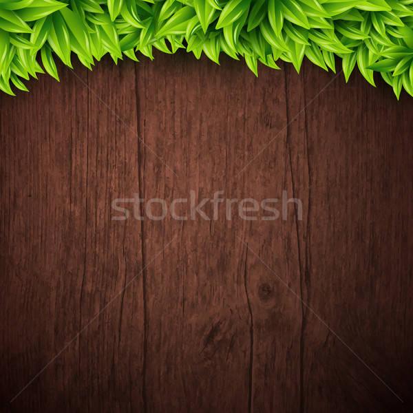 природного листьев вектора текстуры дерево Сток-фото © alevtina
