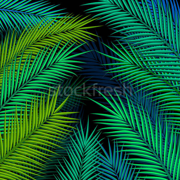 Tropical background with palm leaves. Vector illustration.  Stock photo © alevtina