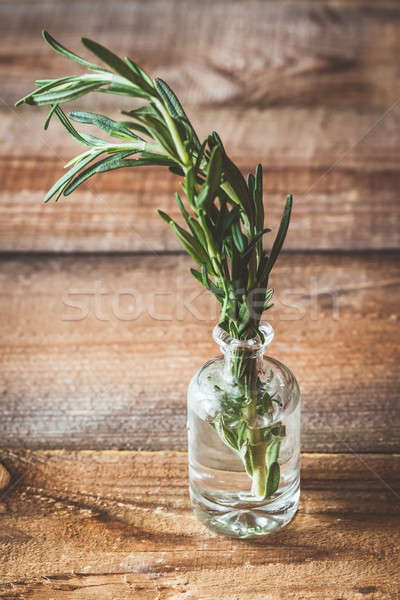 Fresh rosemary in vial Stock photo © Alex9500