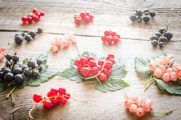 Frescos grosella hojas alimentos jardín Foto stock © Alex9500