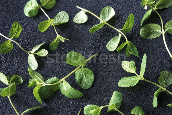 Sprigs of fresh mint on the dark background Stock photo © Alex9500