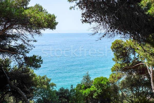 Sea view from Santa Clotilde gardens, Catalonia Stock photo © Alex9500