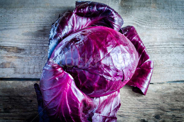 Red cabbage Stock photo © Alex9500