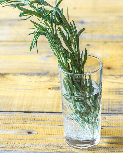 新鮮な ローズマリー ガラス 水 緑 工場 ストックフォト © Alex9500