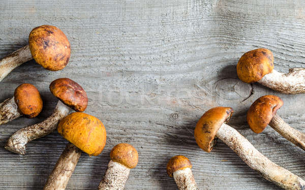 orange-cap boletus mushrooms Stock photo © Alex9500