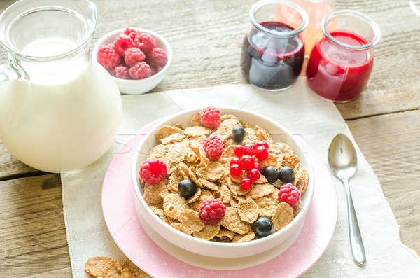Teljes kiőrlésű granola tej friss bogyók nyár Stock fotó © Alex9500