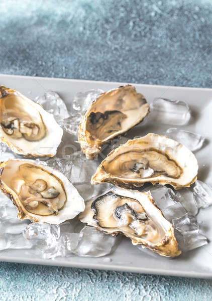 Raw oysters on the plate Stock photo © Alex9500