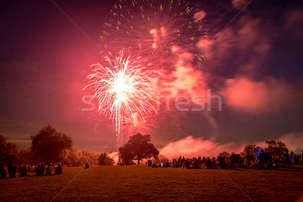 People looking at fireworks in honor of Independence Day Stock photo © Alex9500