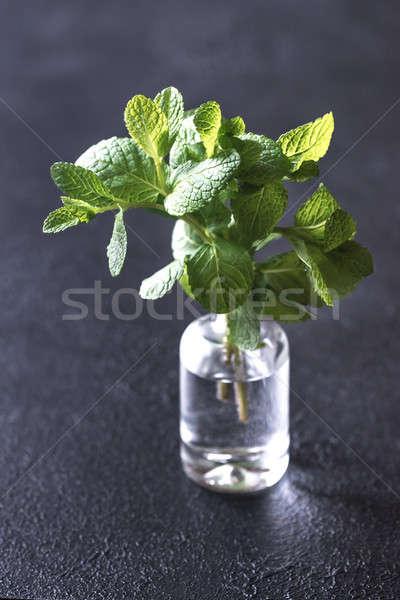 新鮮な ミント ガラス 花瓶 食品 ストックフォト © Alex9500