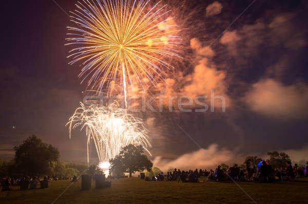 Personas mirando fuegos artificiales honrar día fuego Foto stock © Alex9500