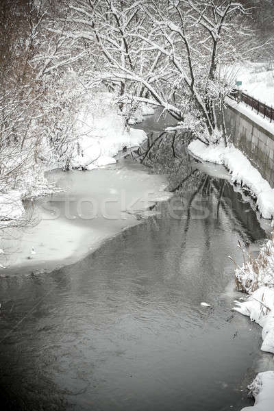River on winter Stock photo © Alex9500