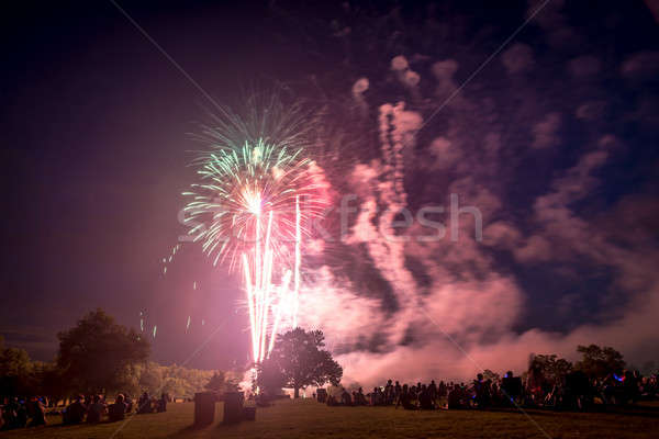 Emberek néz tűzijáték becsület nap tűz Stock fotó © Alex9500