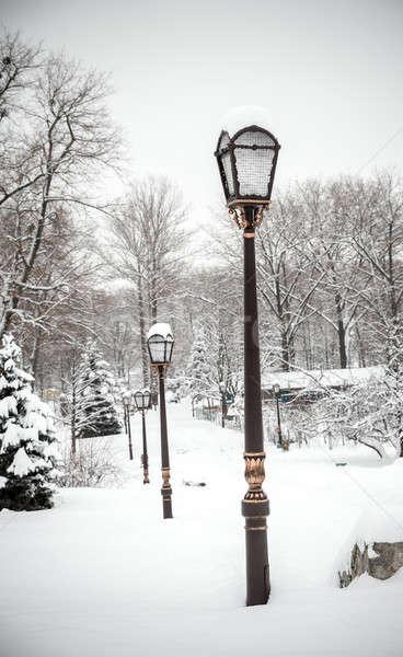 Snow park Stock photo © Alex9500