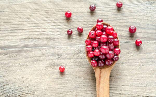 fresh cranberries Stock photo © Alex9500