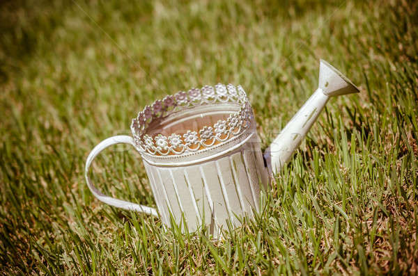 Old-fashioned watering can in the grass Stock photo © Alex9500