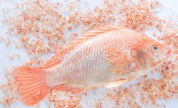 Fresh Tilapia with pink salt Stock photo © Alex9500