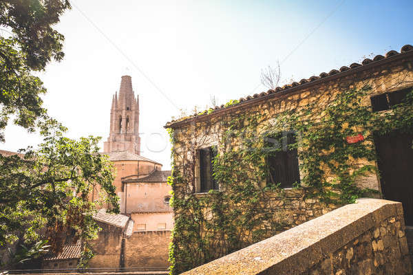 View on Church of St. Felix from Girona streets Stock photo © Alex9500