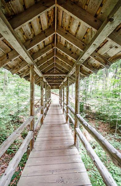 Covered bridge Stock photo © Alex9500