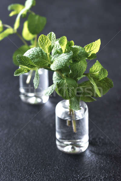 Bunch of fresh mint in the glass vials Stock photo © Alex9500