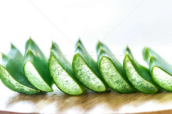 Frescos hojas aloe belleza verde vida Foto stock © Alex9500