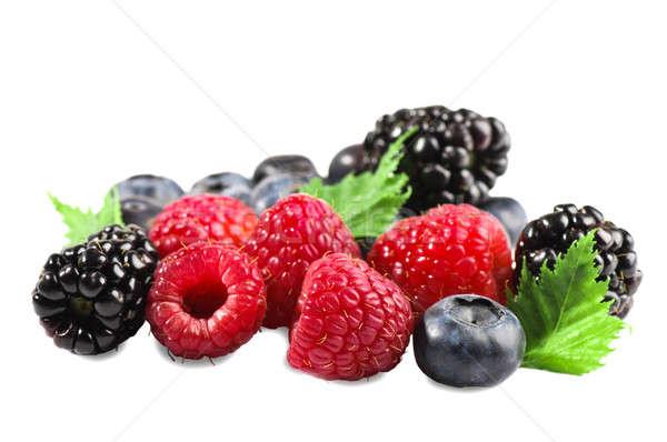 Berries isolated. Stock photo © alex_davydoff