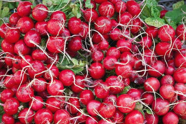 красный редис влажный изолированный белый продовольствие Сток-фото © alex_davydoff
