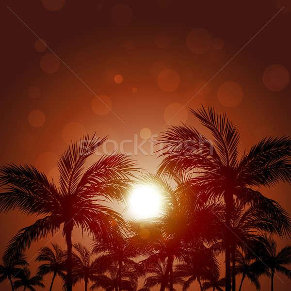 Pacific Palms Stock photo © alexaldo