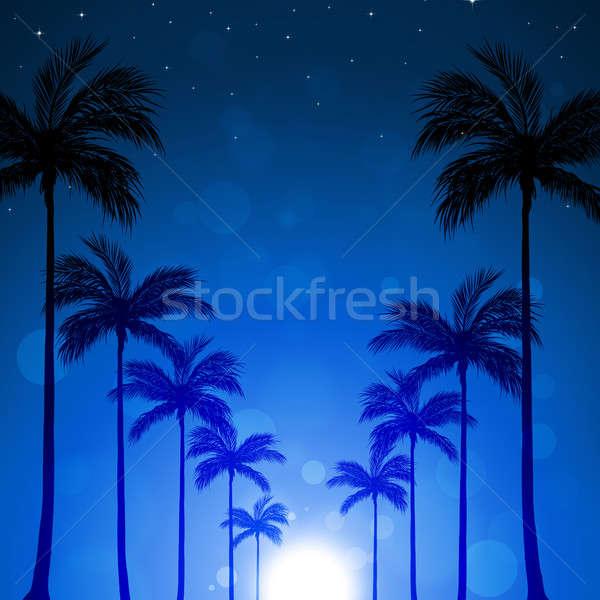 Arbres allée tropicales nuit bleu palmiers Photo stock © alexaldo