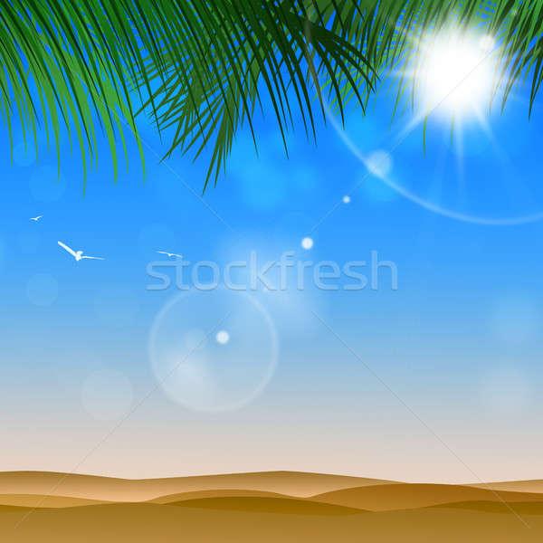 Napos idő sivatag fényes trópusi pálmafák napos Stock fotó © alexaldo