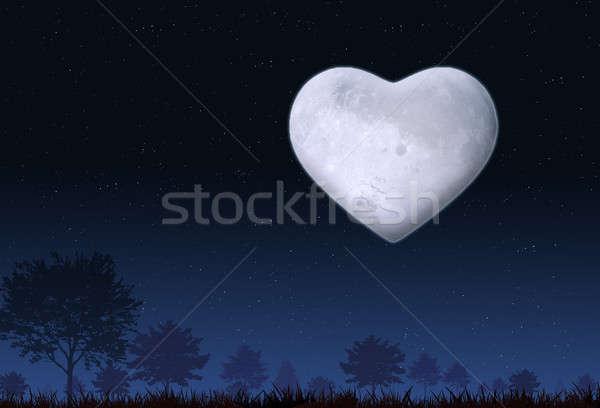 Valentin nap hangulat éjszaka természet ünnep szív alak Stock fotó © alexaldo