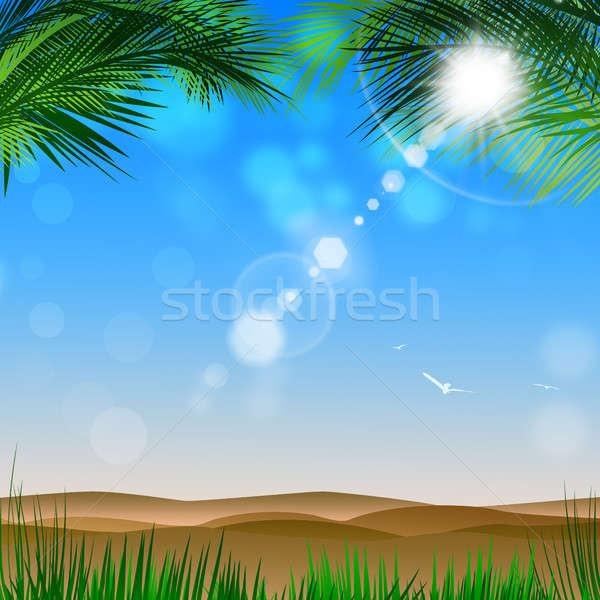 Sivatag kilátás pálmafák fényes trópusi pálmafák Stock fotó © alexaldo