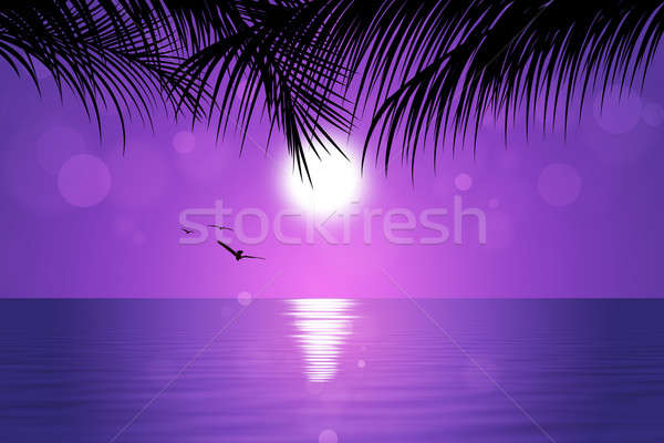 Tropical Pink Sunset Stock photo © alexaldo