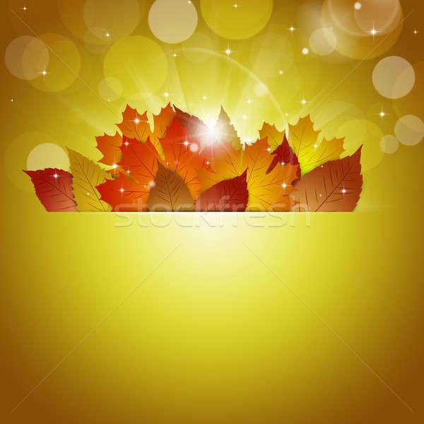 Napsütés arany absztrakt ősz homályos fények Stock fotó © alexaldo