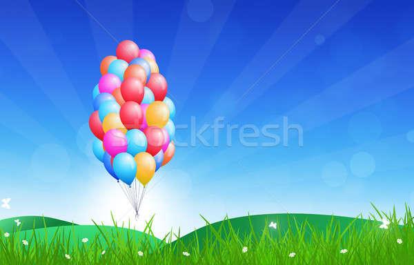 Gelukkige verjaardag ballonnen viering veel vliegen natuur Stockfoto © alexaldo