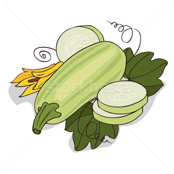Isolate courgette or zucchini Stock photo © alexanderandariadna