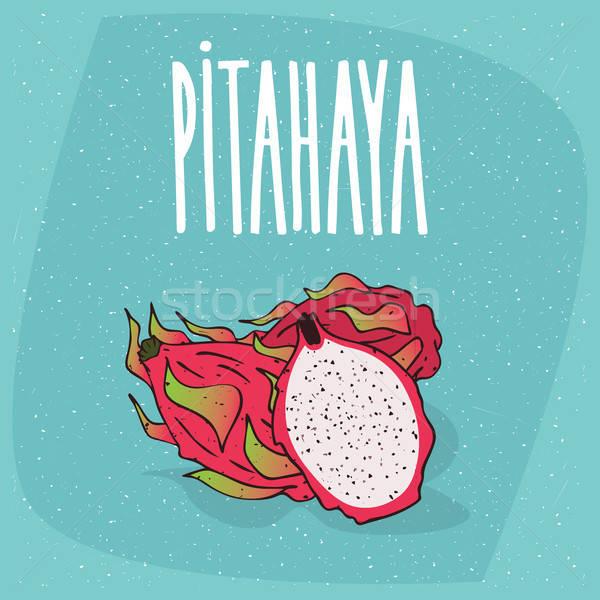 Isolated ripe pitaya or pitahaya or dragon fruit Stock photo © alexanderandariadna